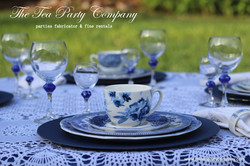Blue Toile teacup and saucer