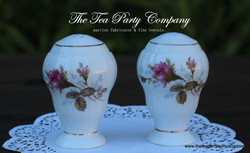 Salt & Pepper Shakers The Tea Party Company (4)
