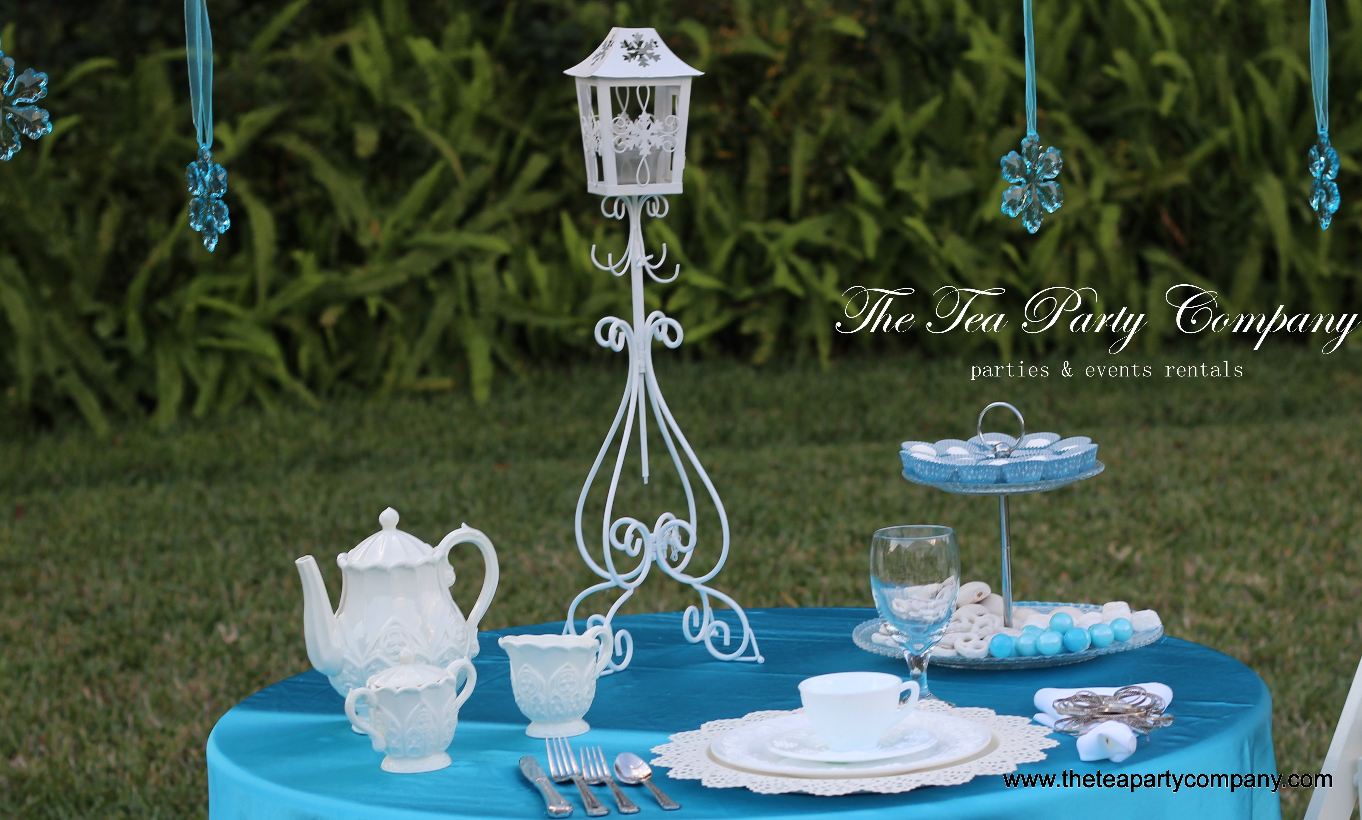 Frozen Theme The Tea Party Company (4)