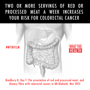 graphic WTH colon.png