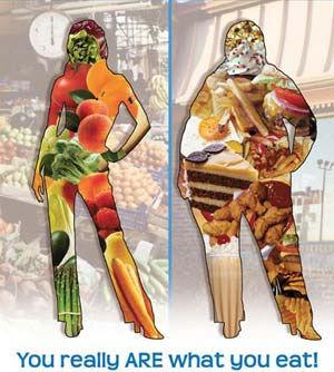 weightloss thin body veg fat body junk.j