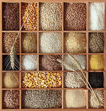 Whole-Grains2.jpg