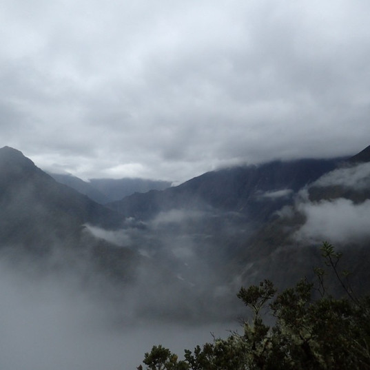 1564573346-cloud-forest-on-the-inca-trai