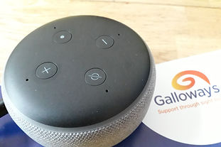 Picture of an Amazon Echo Device