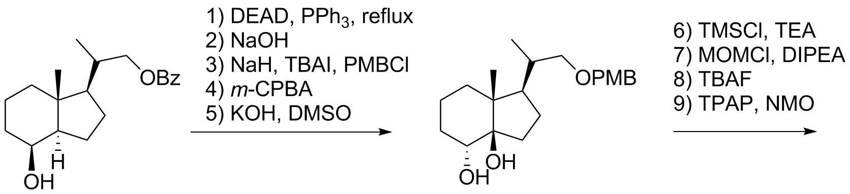 Reaction Sequence 20