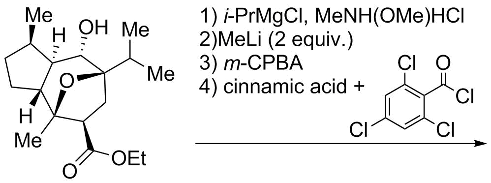 Reaction Sequence 16