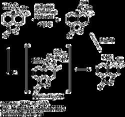 Chemoselectivity 2