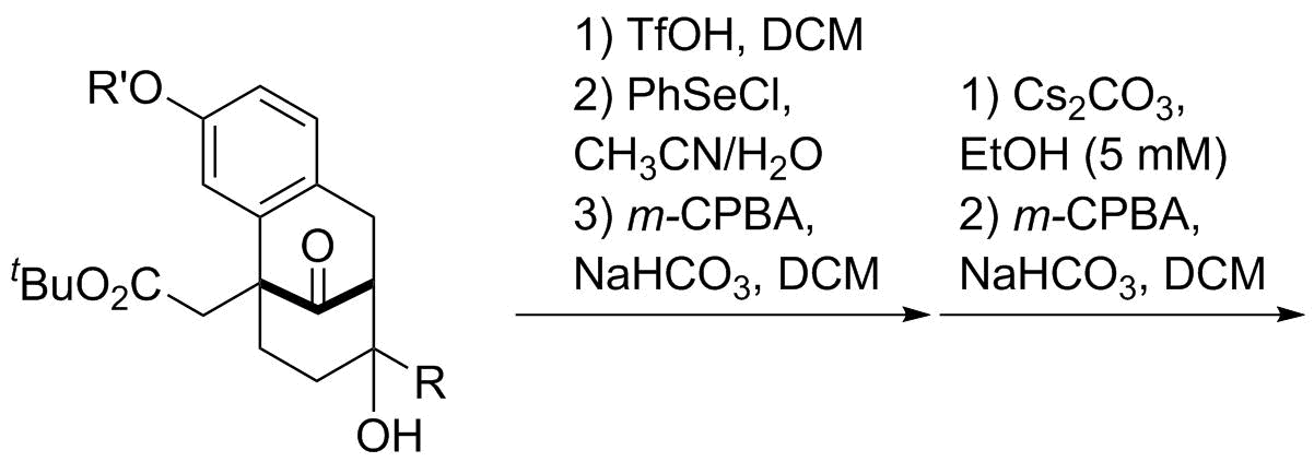 Reaction Sequence 33
