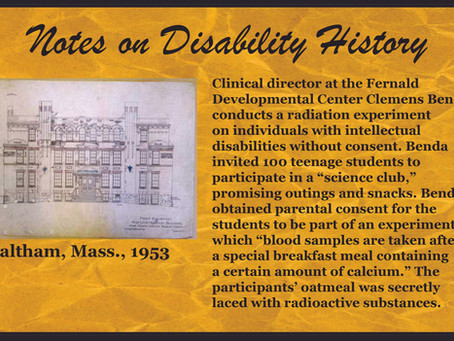 Notes on Disability History
