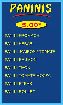 paninis copie.png