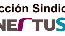 Éxito de UGT-FICA en las elecciones sindicales de Nertus Santa Catalina.