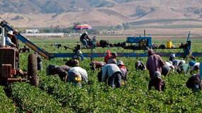 UGT reclama una fiscalía de delitos contra los derechos de los trabajadores