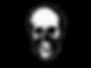 SkullHeaderSeperator.png