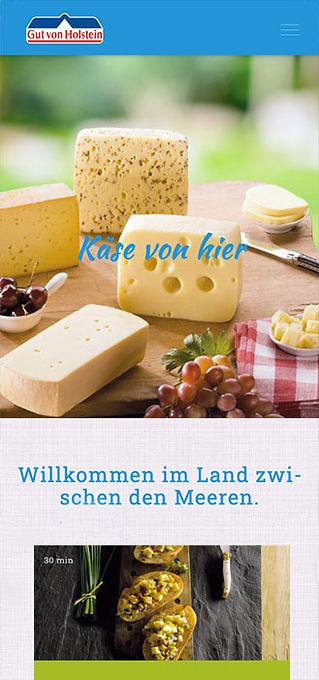 Laborato-Gutvonholstein-webdesign.jpg