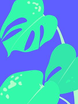 palmie.jpg