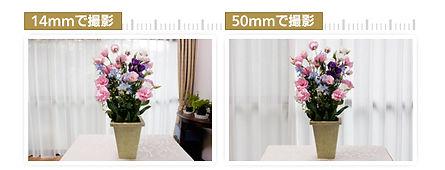 lens3_pic.jpg