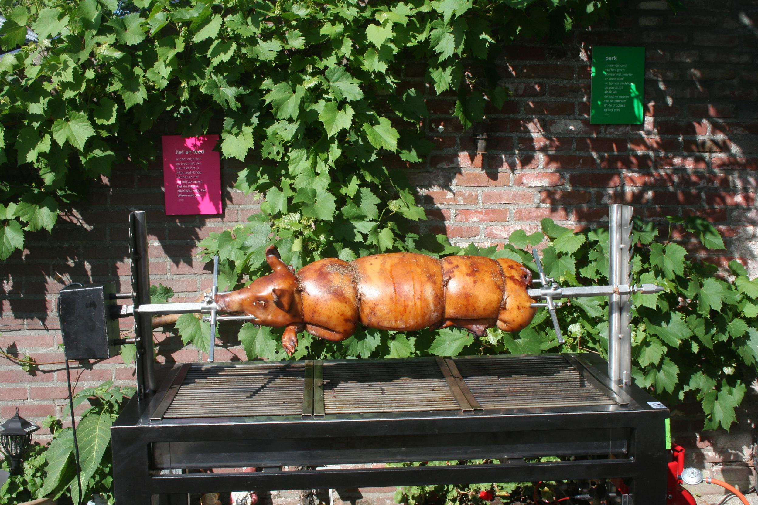 catering - varken aan het spit
