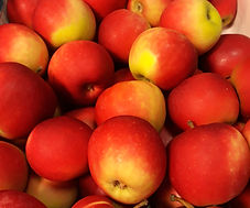 lokaal_fruit.jpg