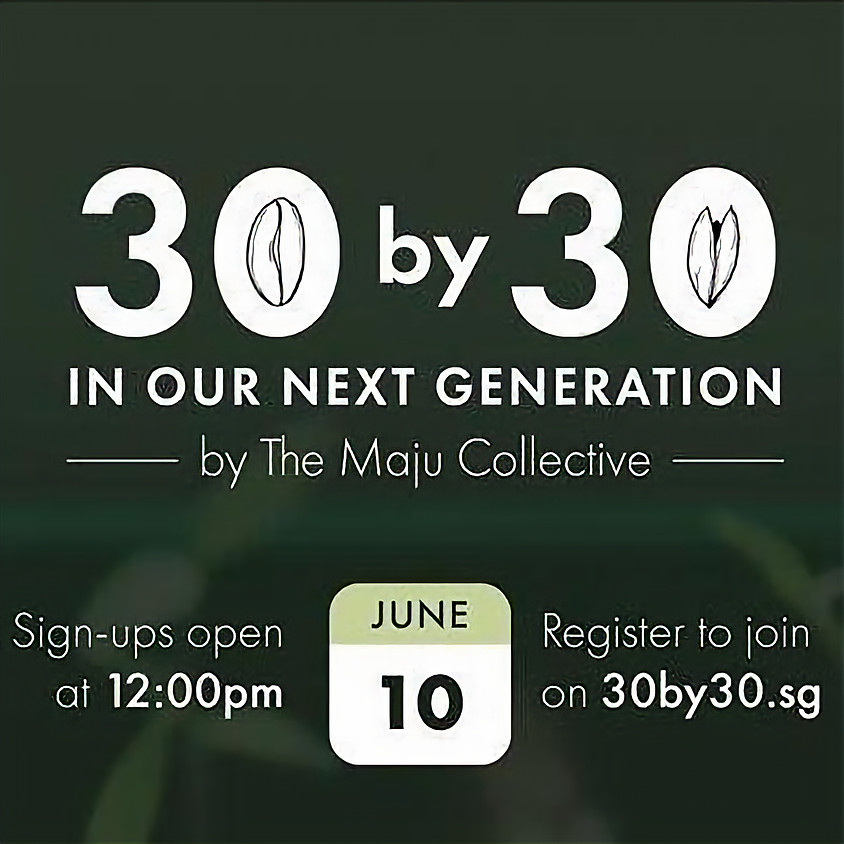 30 by 30 in our next generation by The Maju Collective