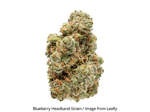 Blueberry Headband