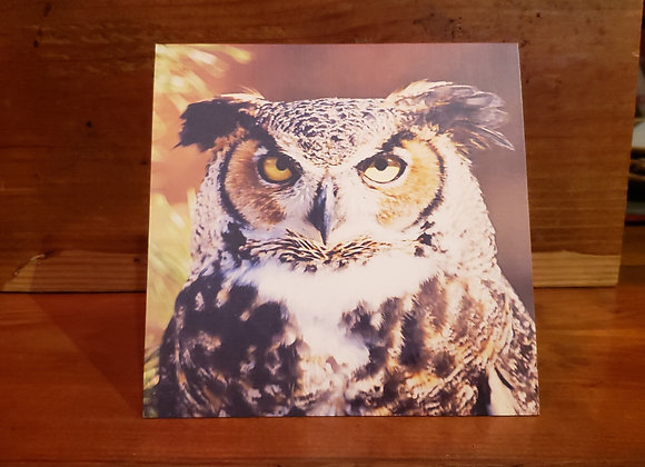 CABIN CARD WISE OWL