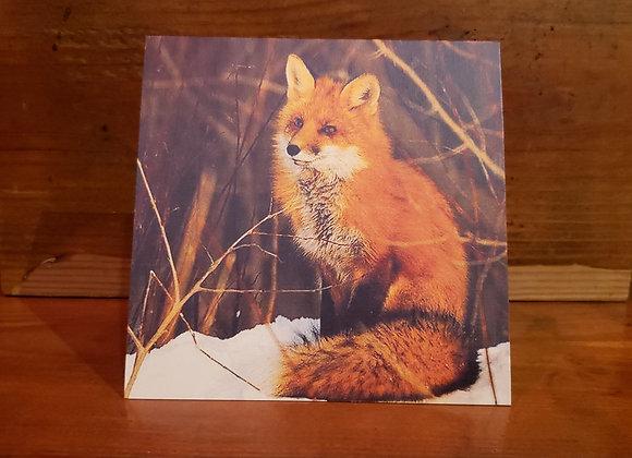 CABIN CARD FOX