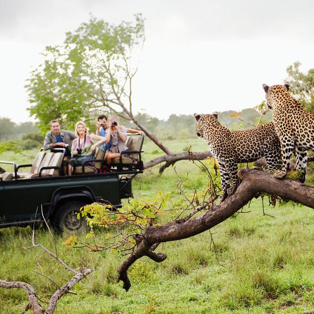 Erlebnisreiches Südafrika