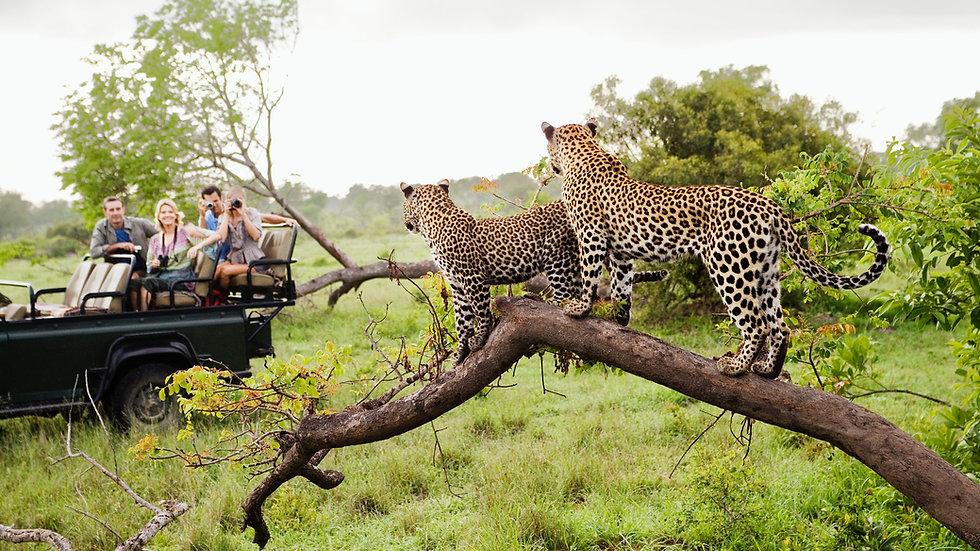 Tanzania de lujo