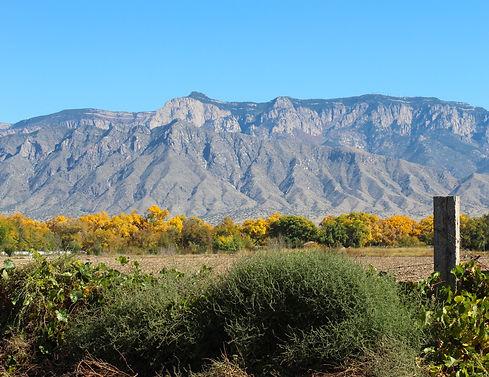 Corrales View.JPG