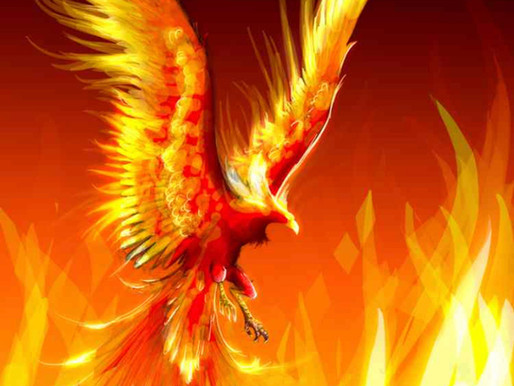 The Phoenix Rises Again