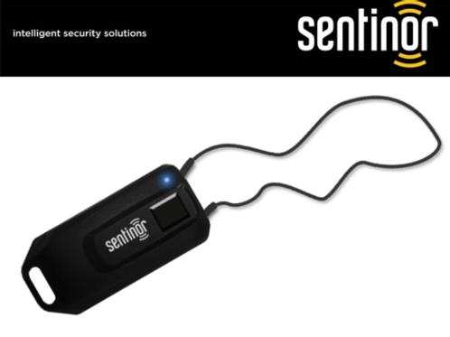 Sentinor Legacy 407-NT Pendant