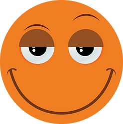Fun Bully Orange Large.png