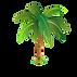 palmier .png