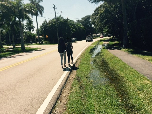 mark_kids_walking_in_roadway_to_avoid_puddle