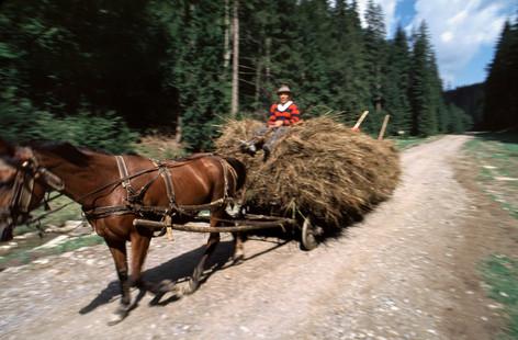ErikPawassarPhoto_Romania_05.jpg