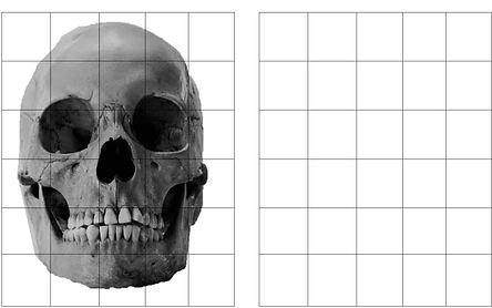 Skull Grid.jpg