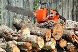 moto y wood