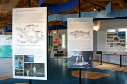 P_Roanoke Canal Museum1