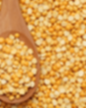 split yellow lentils.png