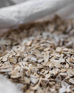 jumbo oats (1).jpeg