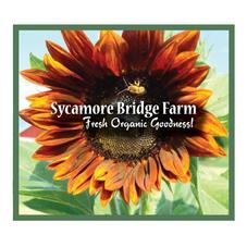 Sycamore-Bridge.png