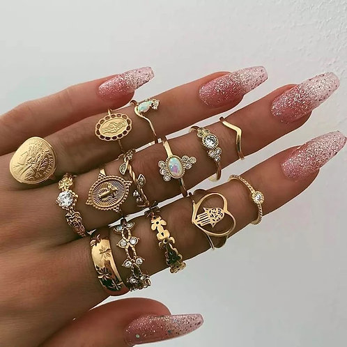 Fourteen piece ring set