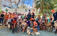 Dog walk group photo.jpg