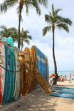 pat whelen surf-min.png