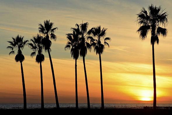 sunset blvd.jpg