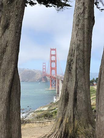 Spot Golden Gate