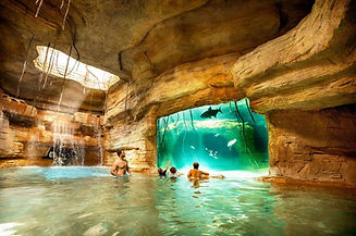 Nassau grotte a requins