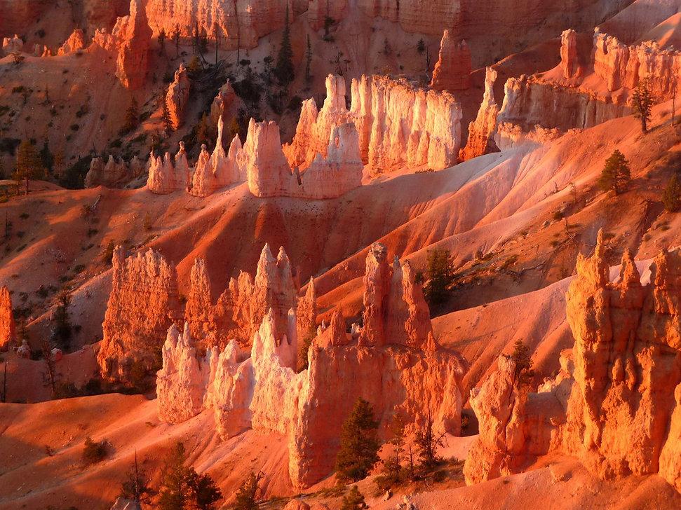 Parc de Bryce Canyon en Utah