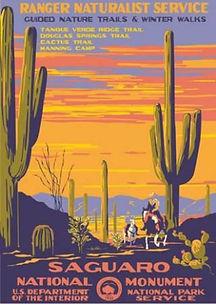 Saguaro parc national Arizona