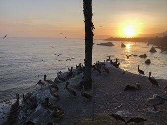 Couche de soleil sur Pismo Beach